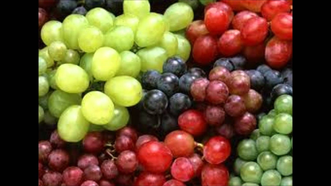 Semilla de uva para adelgazar