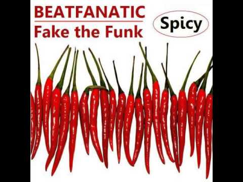 Fake the Funk - Beatfanatic (B.W.H.:Stop -cover remix whatever)