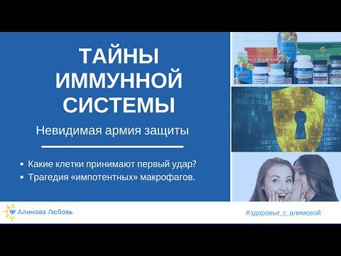ЛЕКЦИЯ № 2. Органы иммунной системы / Общая и клиническая