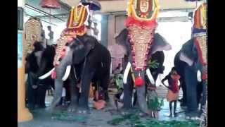 thrikkadavoor sivaraju in kalanjoor mahadeva temple
