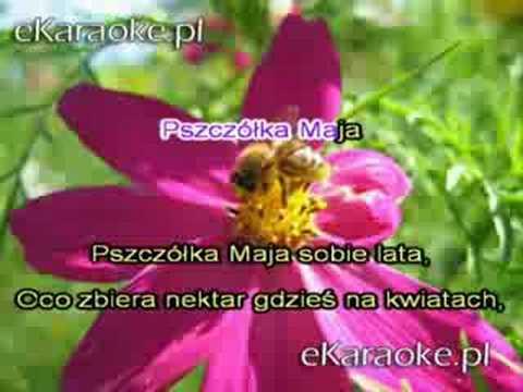 Akcent - Pszczółka Maja [karaoke]