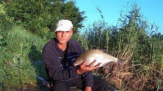 Риболовля на річці. Сумовитий фідер (частина друга). Уклейка. Лящ. Карась.