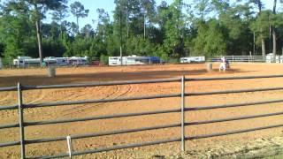 Kaitlynn and Ginger first horse show Alma, GA June 1, 2013