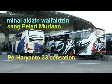 Bus cepat mudik Lebaran,Trip Report Haryanto 23 Sensation