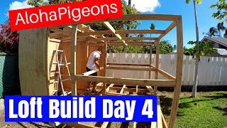 Homing Racing Pigeon Loft Construction Day 4