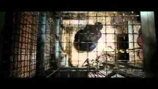 Восстание обезьян 2011 Международный трейлер