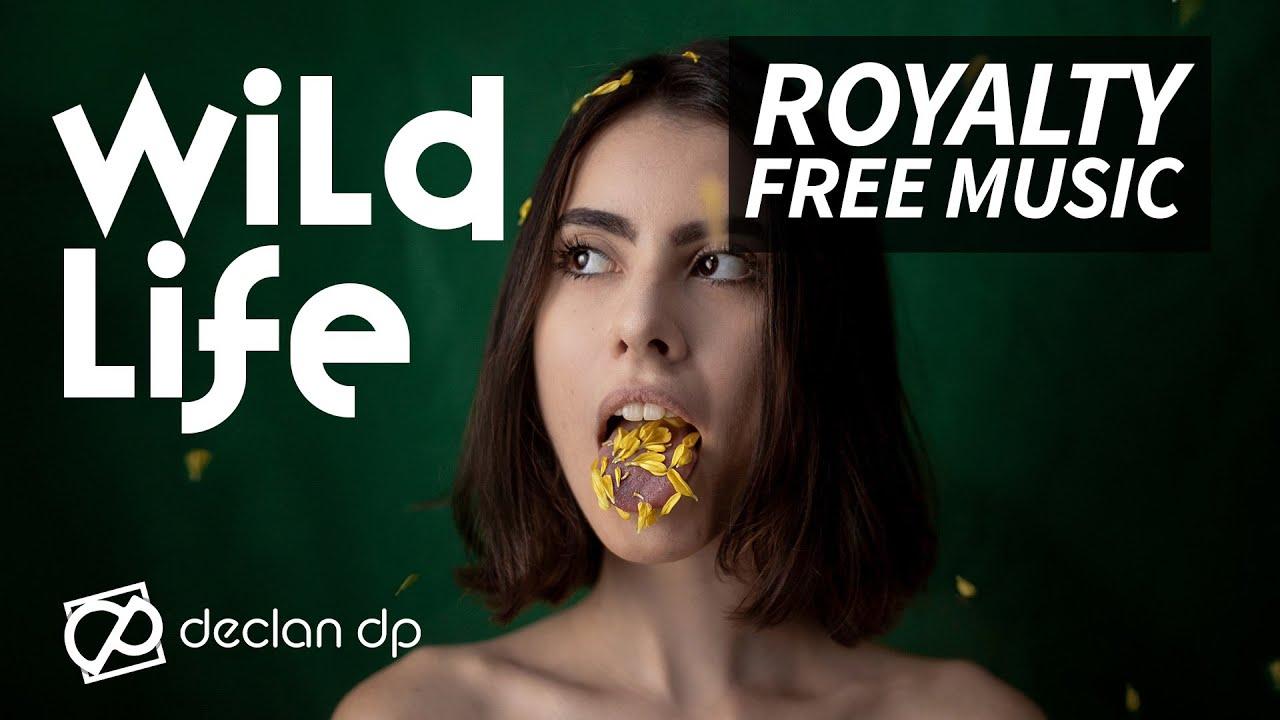 Declan DP - Wildlife | Official Audio - YouTube
