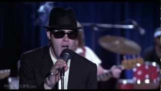 The Blues Brothers (1980) - 100th Anniversary Classic Moments [HD]