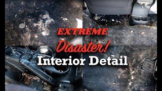 Extreme Interior Detail -- Dog Fur, Rotten Food, Spills, Dirt, Garbage, Jeep Wrangler