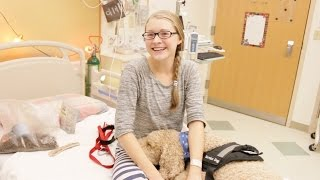 CARING FOR MY SERVICE DOG IN THE HOSPITAL
