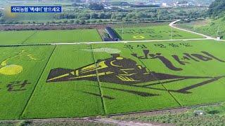 곡성 석곡농협, 100세 어르신에 '백세미' 선물 '화…