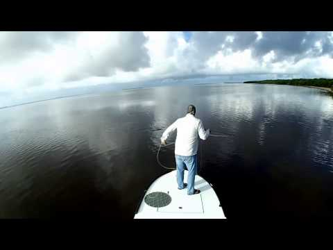 Everglades Fly Fishing For Snook, Tarpon And Redfish