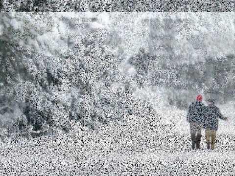 Zerrin Özer  Kar Tanesi