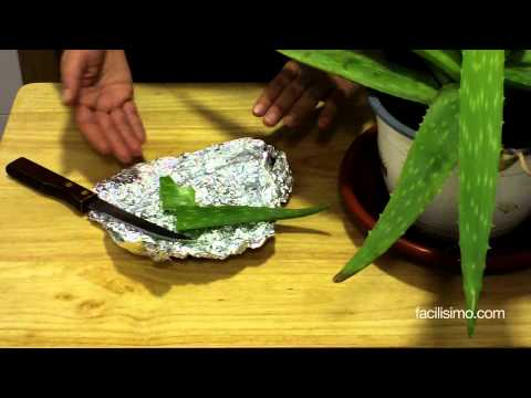 Como hacer el callista si el hongo sobre las uñas