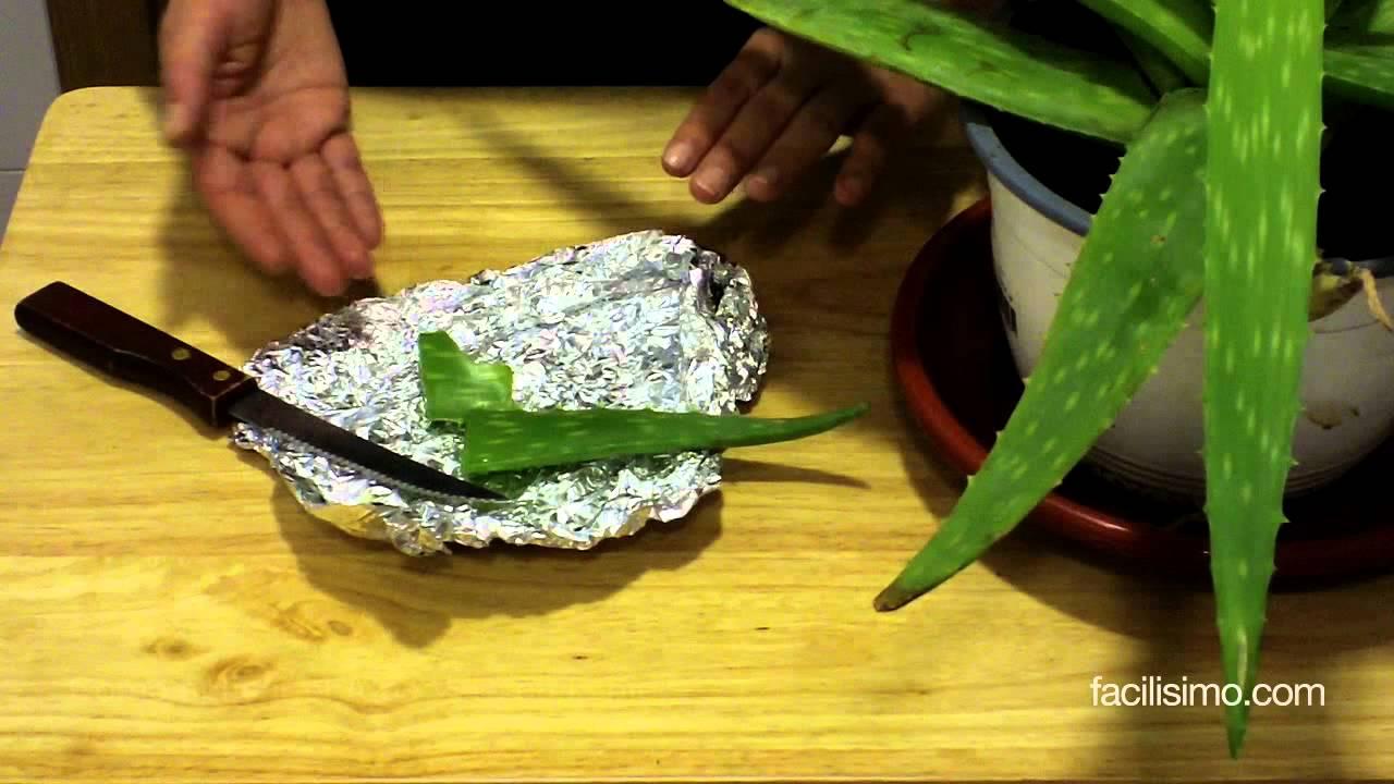 Cómo Aplicar El Aloe Vera En La Piel Facilisimocom Youtube