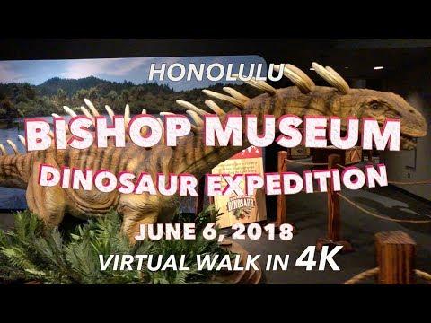 Bishop Museum Dinosaurs 6/6/2018 [4K]