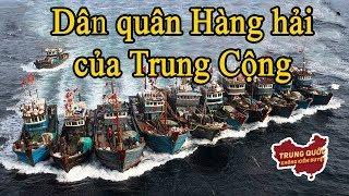 Dân quân Hàng hải: Lực lượng hải quân bí mật của Trung Quốc | Trung Quốc Không Kiểm Duyệt