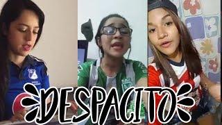 Jóvenes Cantan Despacito. Nacional - Millonario - Junior