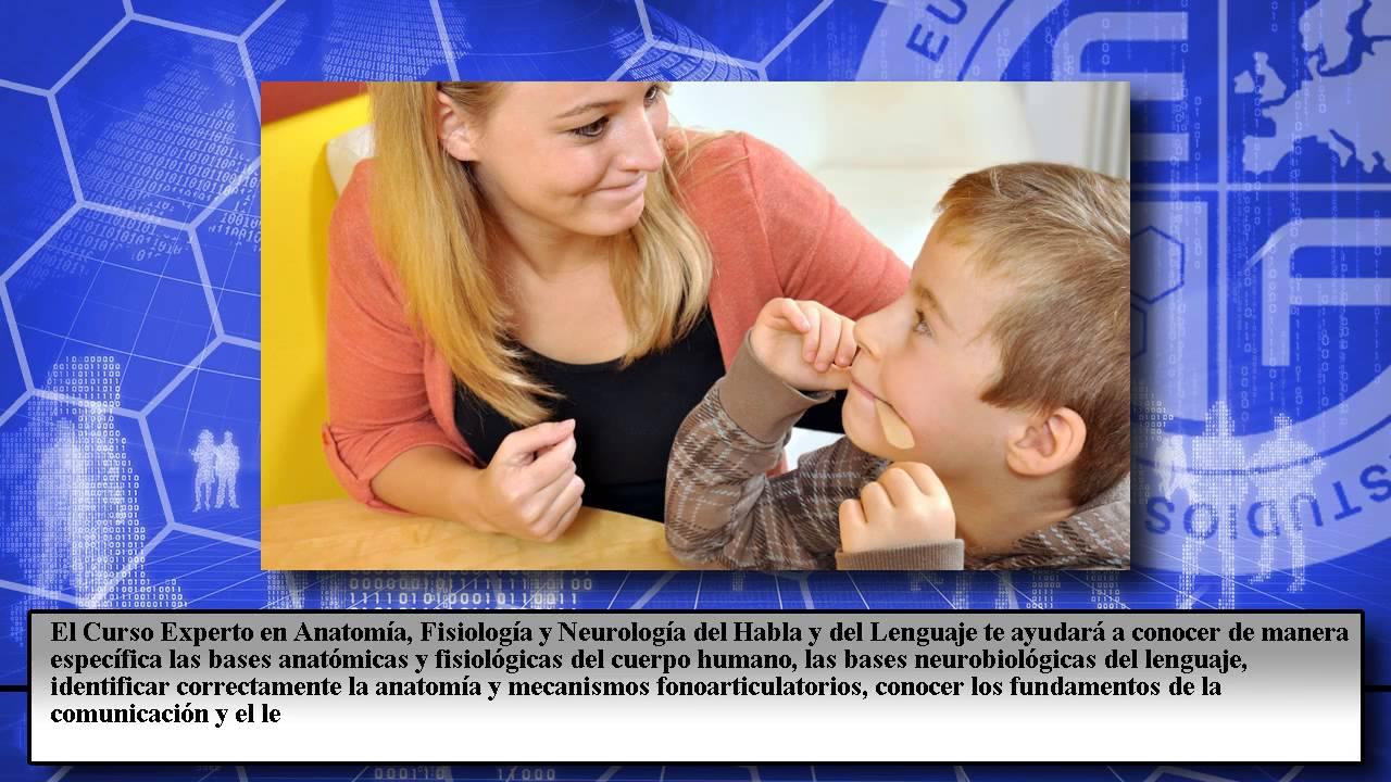 Experto Anatomia Fisiologia Neurologia Habla Lenguaje - Cursos ...