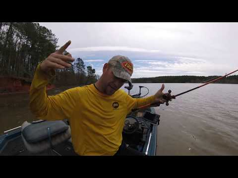 Lake Chesdin Bass Fishing In March