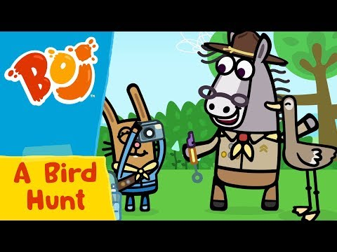 Boj - A Bird Hunt | Cartoons for Kids