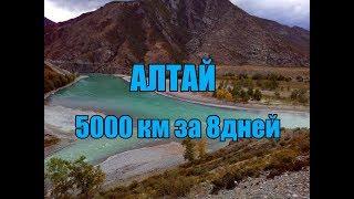 Путешествие на Алтай. 5000 километров за 8 дней.