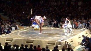 とどろきアリーナで開催された、川崎ふるさと場所の横綱鶴竜の土俵入り...