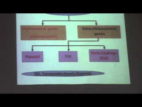6) Dr. Eman Wali 11/10/15 [Bacterial Genetics continued-Bacterial Variation]