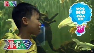 Ước mơ của em Nguyễn Đào Gia Kiệt - Tìm hiểu loài cá chưa biết - 05/07/2015