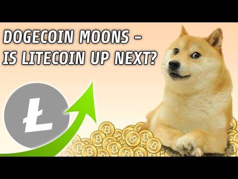 Dogecoin Rallies   Is Litecoin Next?