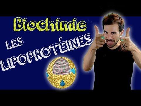Cours de biochimie: LES LIPOPROTÉINES