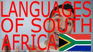 Languages of SOUTH AFRICA! (Languages of the World Episode 1)