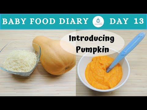 Homemade Pumpkin Baby Food