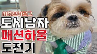 [덕덕튜브] 시츄랑 패션하울 ㅣ 카페비요ㅣ집에서 야경보…