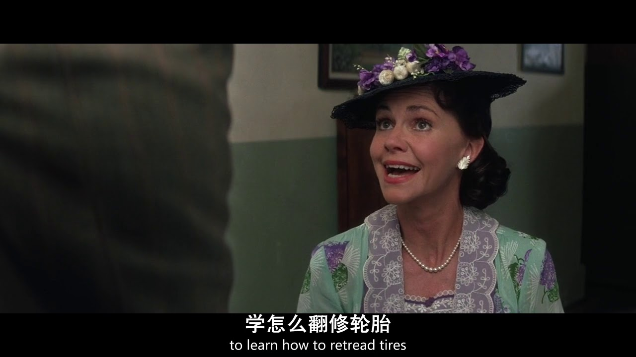 a,gan,zheng,zhuan    BD1280高清特效国英双语双字