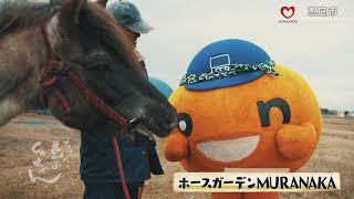 http://www.htb.co.jp/chimata/ 2020年5月14日に放送したものです.