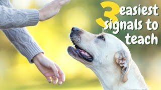 Hand Signals for Dog Training