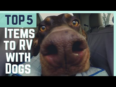 Top 5 MUST HAVE Items To RV With A Dog (2018) || RV 101 || Full Time RV Living
