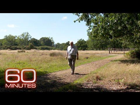 Where Sir David Attenborough draws his optimism
