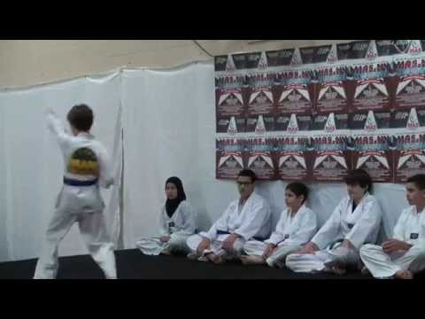 Karate Martial Arts Youths Performance Andalusia School Yonkers MAS NY Conference 2014