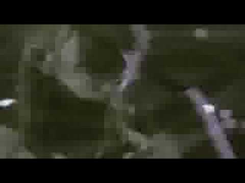 [PV] DEF.DIVA 1st - 好きすぎて バカみたい