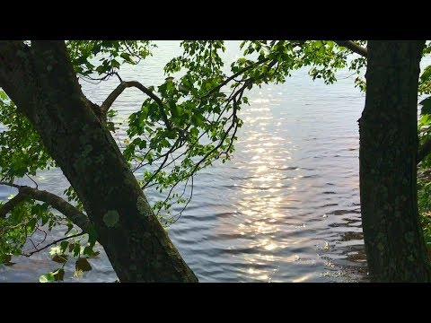Prayer - Akira Ito (dir. Raz Vahn)
