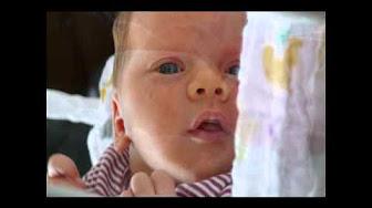 Reinhard Mey Kinderlieder - YouTube