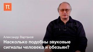 Эмоциональные звуковые сигналы человека и животных Александр Вартанов