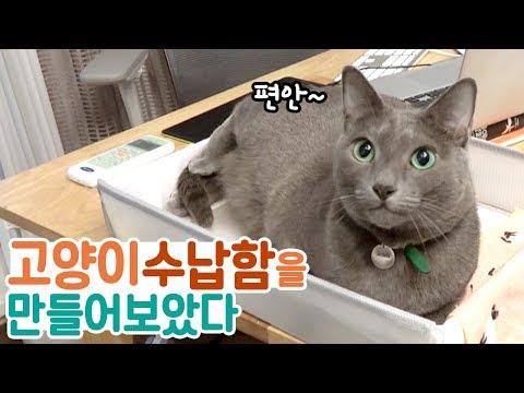 책상 위에 고양이 수납함을 만들어보았다 | 김메주와고양이들