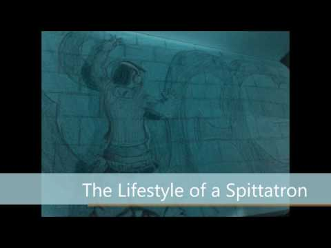The Lifestyle of a Spittatron (prod. by Judo Arigato)