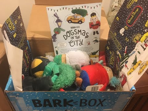 BarkBox Unboxing & Review - December 2017 for Medium Dogs