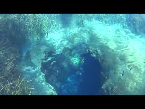 Freediving Florida: Blue Hole at Ichetucknee Springs