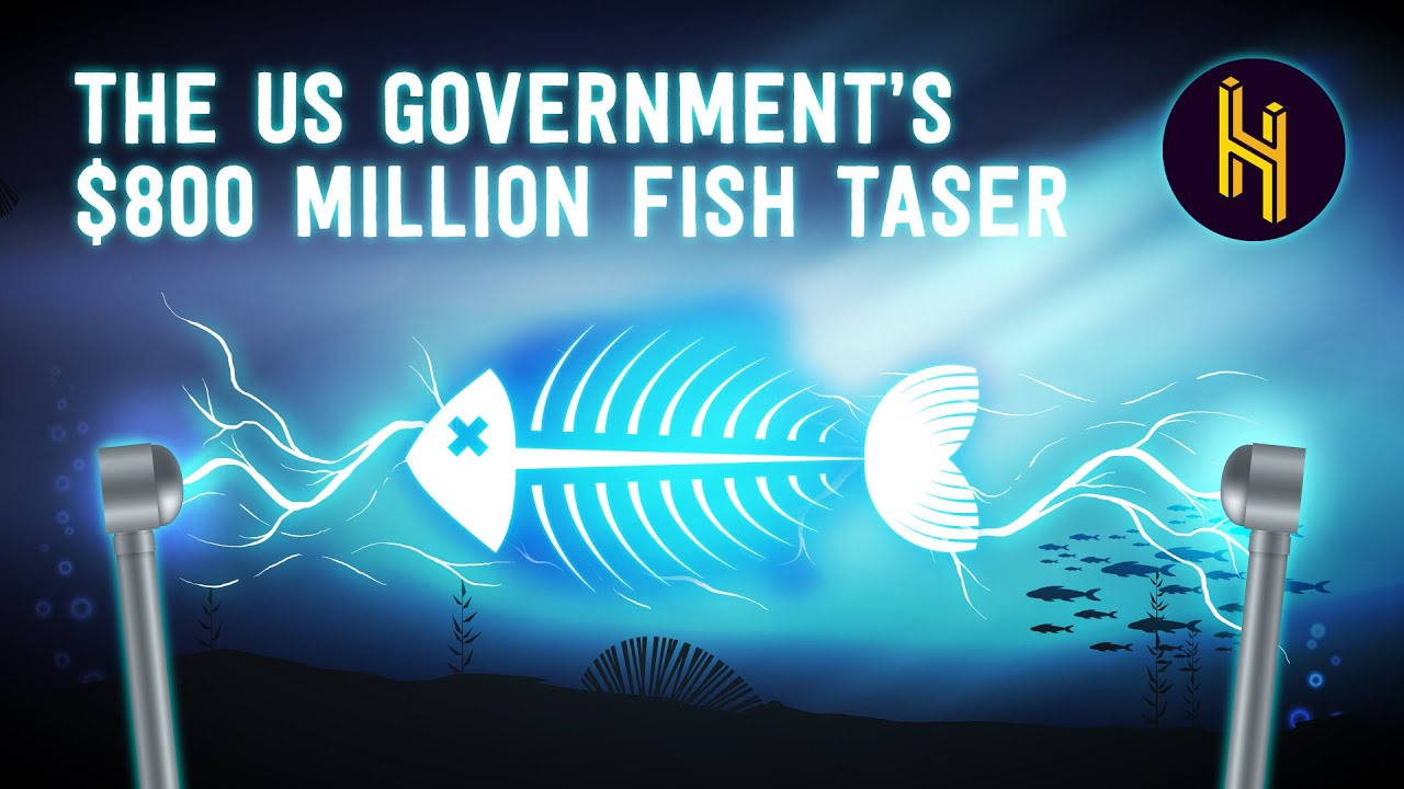 The US Government's 0 Million Fish Taser