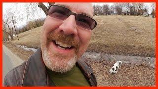 Wendy's Edit, Walk the Dog, Renovations Update, 8 Birthdays - Ken's Vlog #329